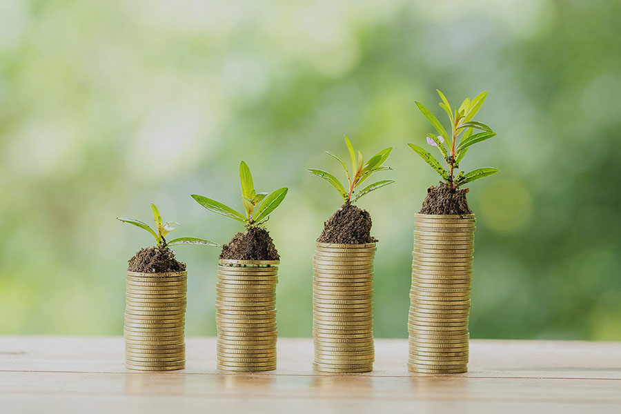 building wealth financial advice veracity wealth planning